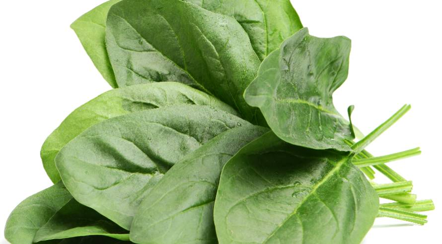 leaves of spinach